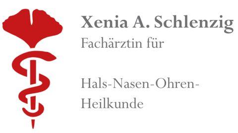 logo-schlenzig
